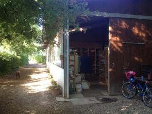 Sylvie's atelier