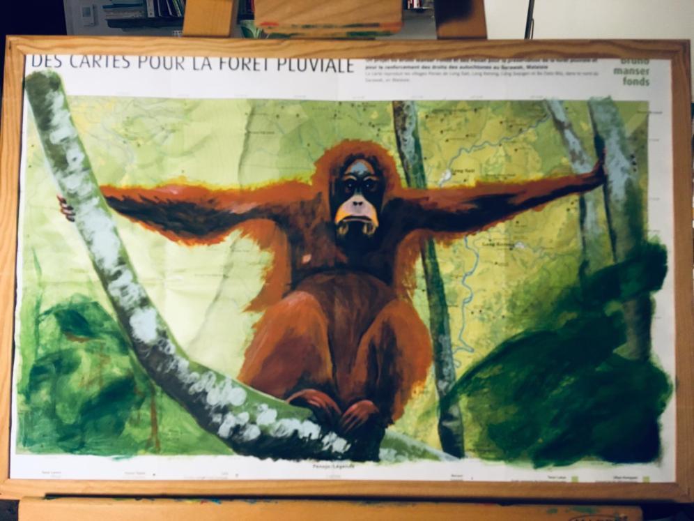 Orangutan map
