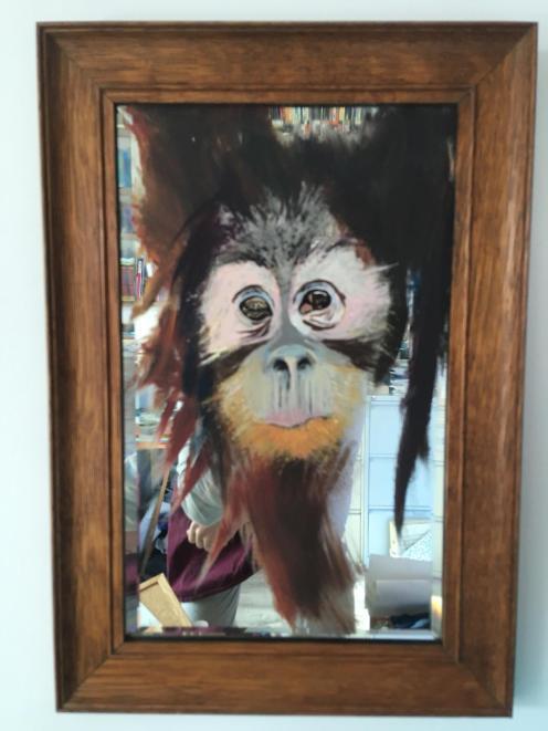 Orangutan mirror